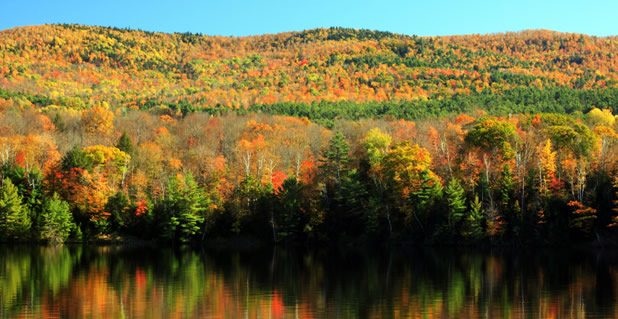 Fall Foliage Tours