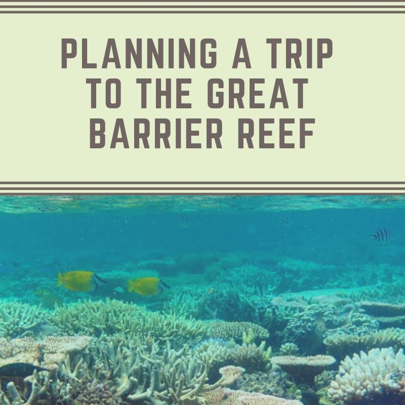 Planning A Trip To The Great Barrier Reef