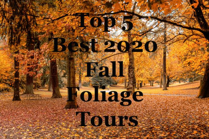 Top 5 Best 2020 Fall Foliage Tours