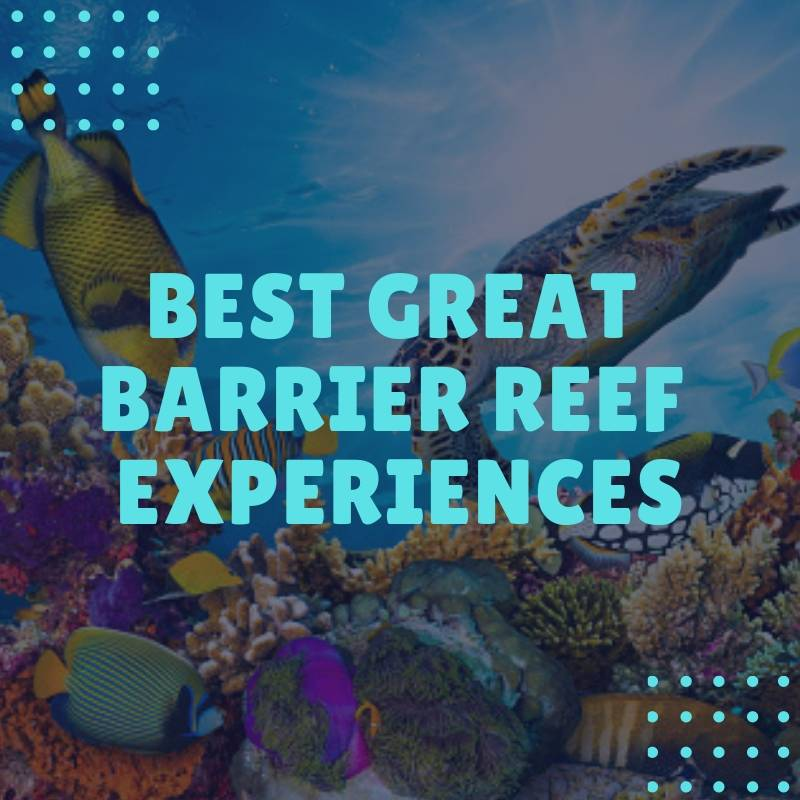 Best Great Barrier Reef Experiences
