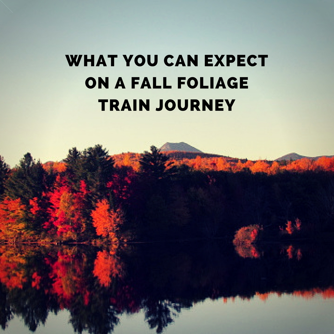 What You Can Expect On A Fall Foliage Train Journey