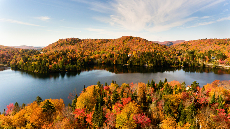 Fall Foliage Travel