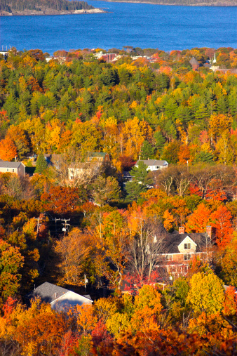 Things to See and Do During Fall Foliage