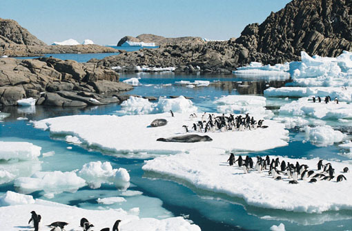 Antarctica Cycling Tours