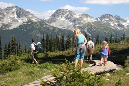 Alaska Land Tours