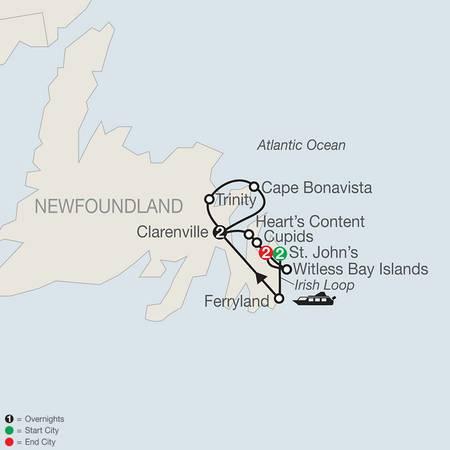 Colorful Newfoundland (CN2020)